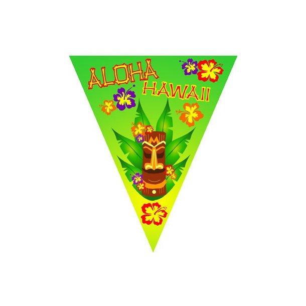 ALOHA HAWAII FLAG BANNER