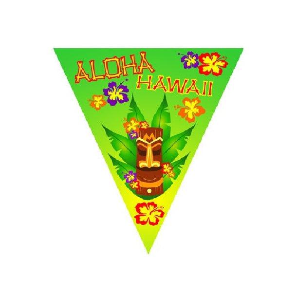 HAWAII FLAG BANNER